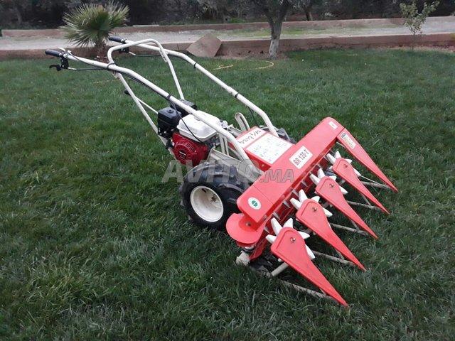 machine honda pour les jardins à vendre à Oujda dans Jardin et ...